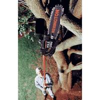 Where to find CHAINSAW POLE ELECTRIC in Sterling