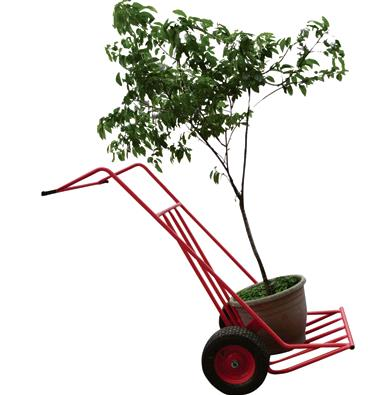 Where to find DOLLIE, TREE - 1500 lb CAPACITY in Sterling