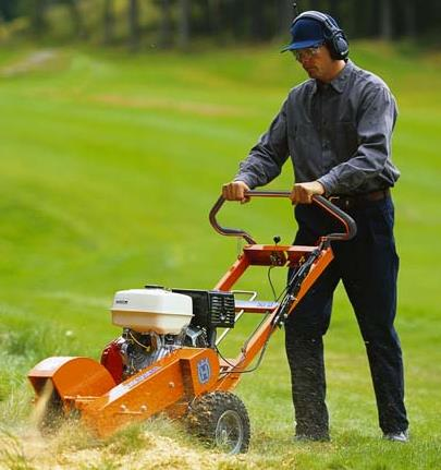 Where to find STUMP GRINDER  PUSH in Sterling