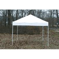 Where to find CANOPY, 10x10 FRAME WHITE in Sterling