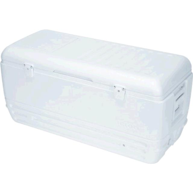 Where to find COOLER, WHITE 150 QT. in Sterling